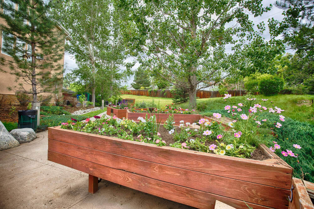 someren glen garden area